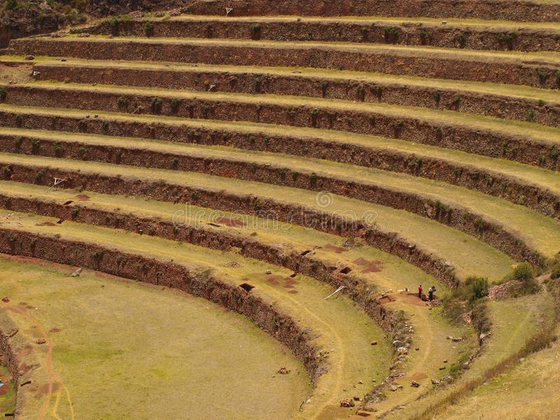 Download Inca agriculture terraces stock image. Image of pisac - 22774795