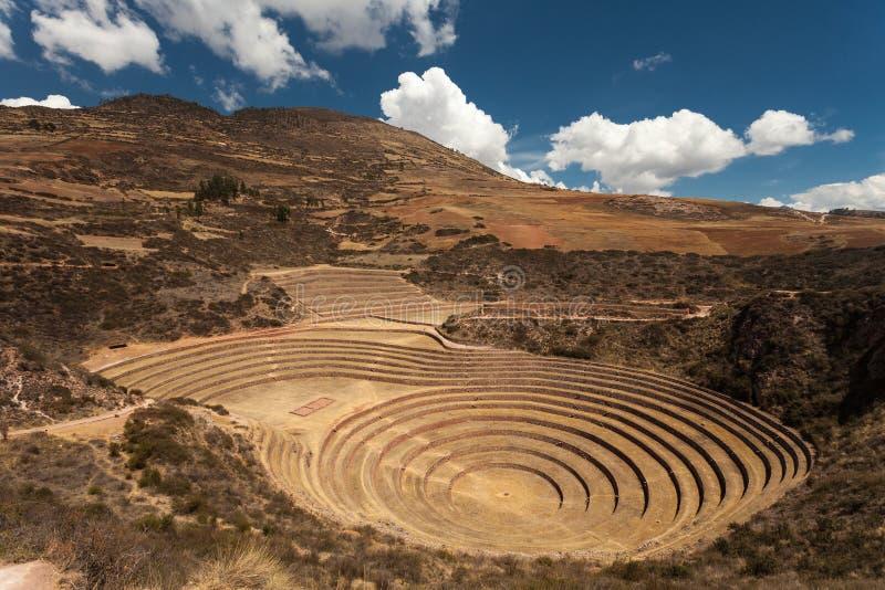 Inca Circular Terraces antigo no Moray, Peru imagens de stock