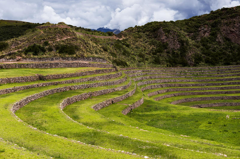 Inca circular terraces in Moray, in the Sacred Valley, Peru. Moray is an archeological site, close to the village of Maras. The ruins consist on several royalty free stock images