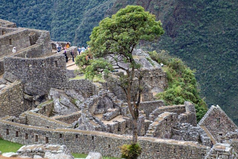 Inca Ruins antigo em Machu Picchu, Peru foto de stock royalty free