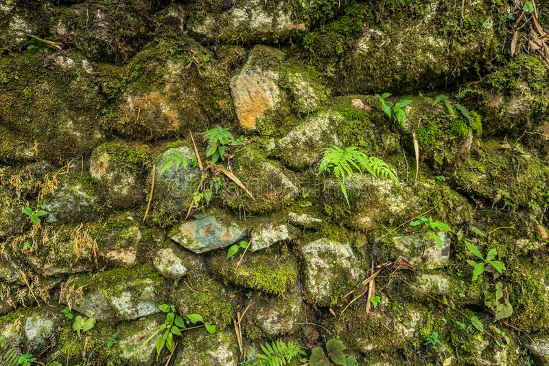 Inca Trail, Peru - August 03, 2017: Texture of Inca wall on the royalty free stock images
