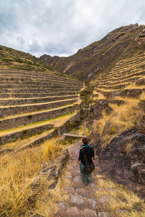 Inca Trails e terraços de exploração de Pisac, Peru foto de stock