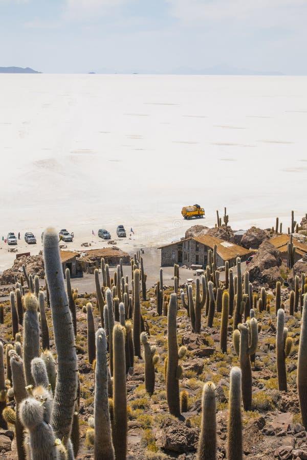 Incahuasi ö, Uyuni saltdam & x28; Salar de Uyuni & x29; , Aitiplano, Bolivia arkivfoton