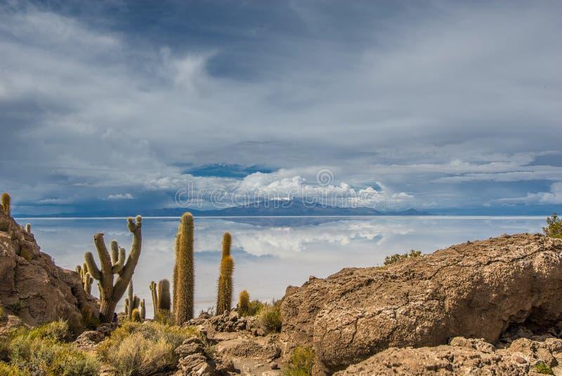 Incahuasi island, Salar de Uyuni, Bolivia. South America royalty free stock photography