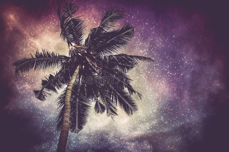 Incandescência natural da Via Látea e o estrelado com pla do coco ilustração do vetor