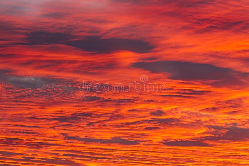 Incandescenza dell'alba fotografie stock