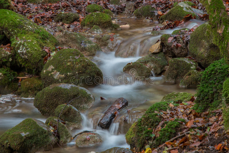 Incanto d'autunno royalty free stock images