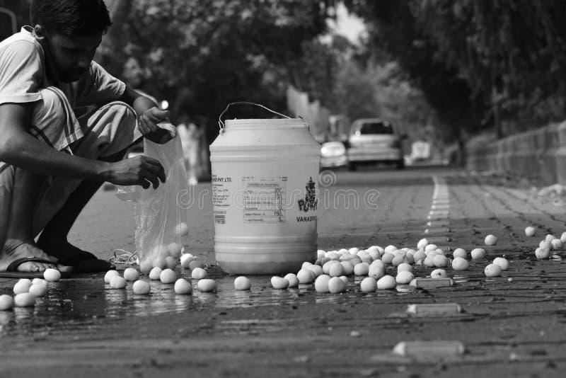 Incardebal la India foto de archivo libre de regalías