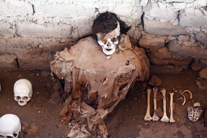 Incas mummy royalty free stock image