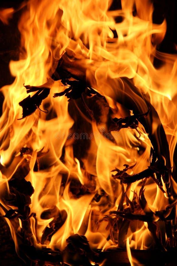 Incendie 4 images libres de droits