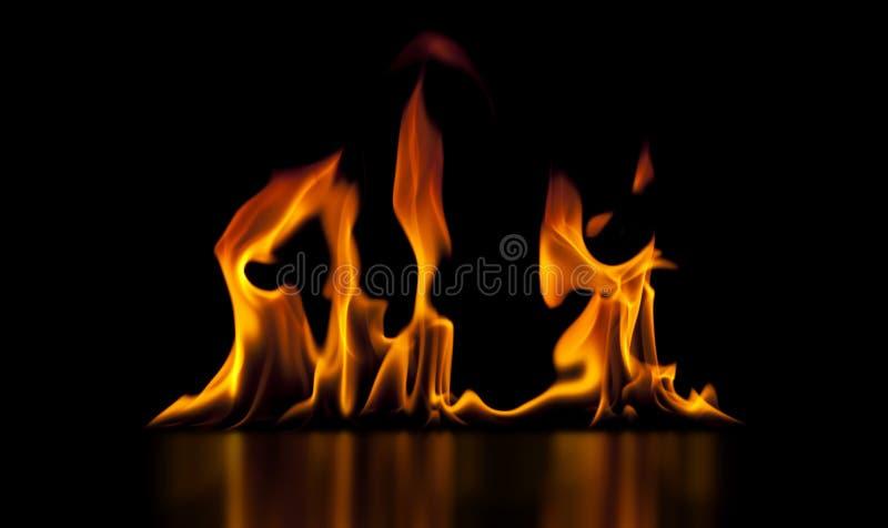 Incendie d'isolement sur le noir photo stock