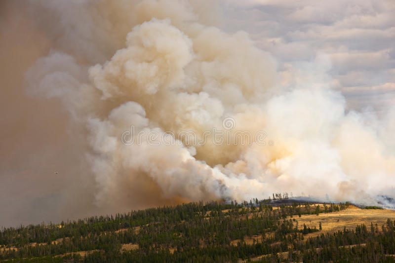 Incendie dans Yellowstone photographie stock libre de droits