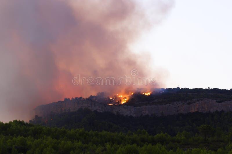 Incendie de forêt au crépuscule photo stock