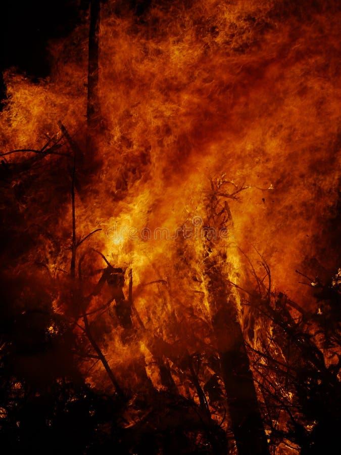Incendie de forêt la nuit images libres de droits