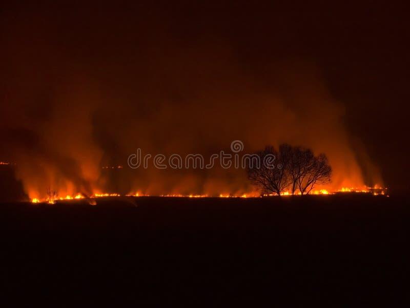 Incendie la nuit photos stock