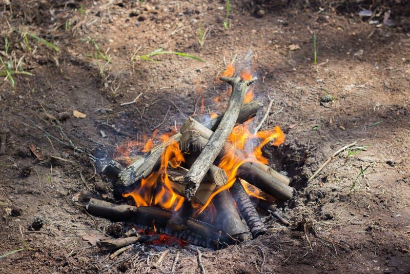 Incendie nature photo stock