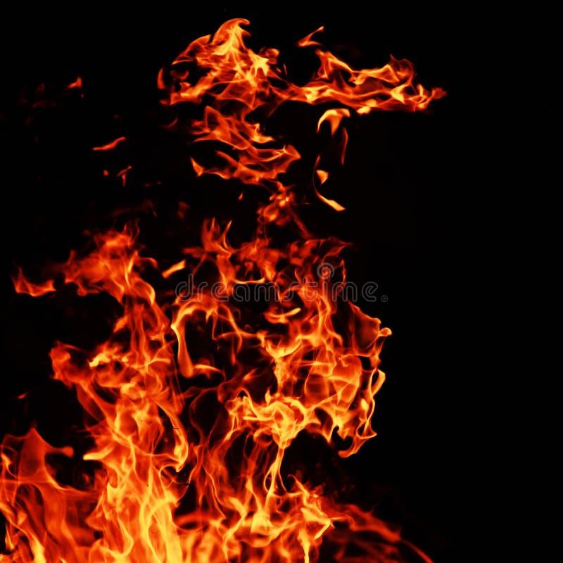 Incendie sur le fond noir photographie stock