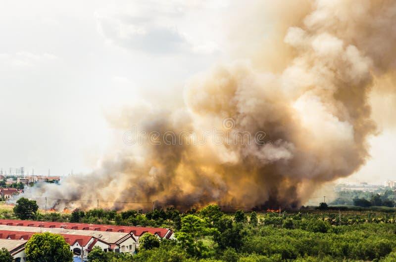 Incendies de forêt dans la ville sur une surabondance chaude Sapeur-pompier aidé à s'empresser d'empêcher le feu écarté au villag image libre de droits