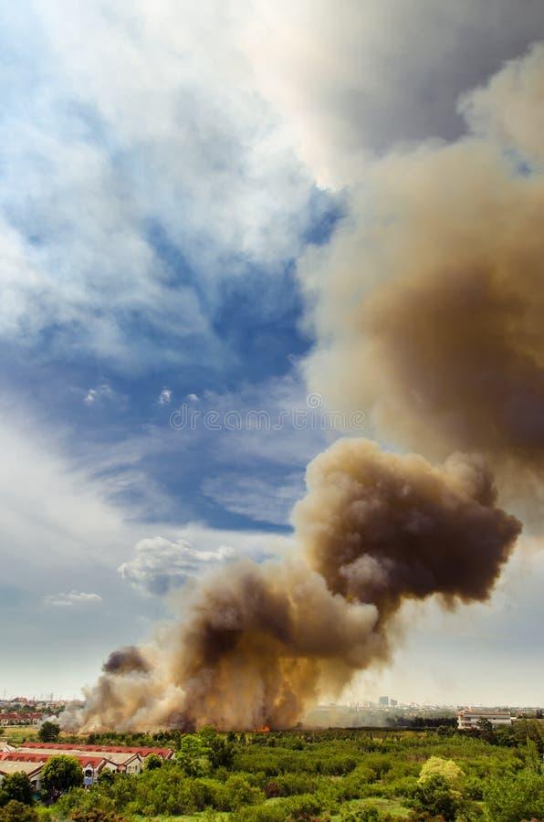 Incendies de forêt dans la ville sur une surabondance chaude Sapeur-pompier aidé à s'empresser d'empêcher le feu écarté au villag image stock