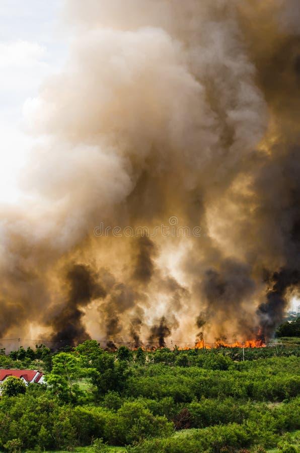 Incendies de forêt dans la ville sur une surabondance chaude Sapeur-pompier aidé à s'empresser d'empêcher le feu écarté au villag photographie stock libre de droits
