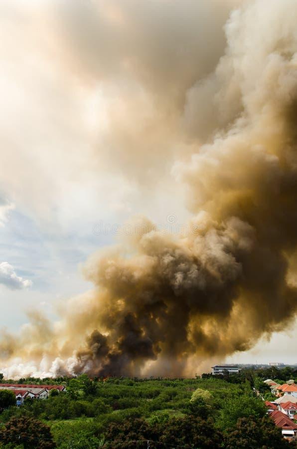 Incendies de forêt dans la ville sur une surabondance chaude Sapeur-pompier aidé à s'empresser d'empêcher le feu écarté au villag images libres de droits