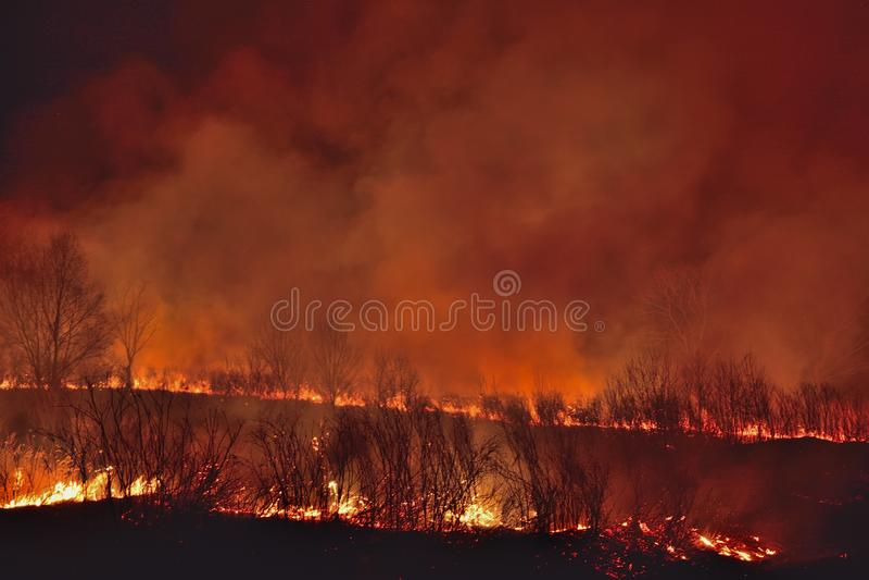 Incendio forestal 10 fotos de archivo