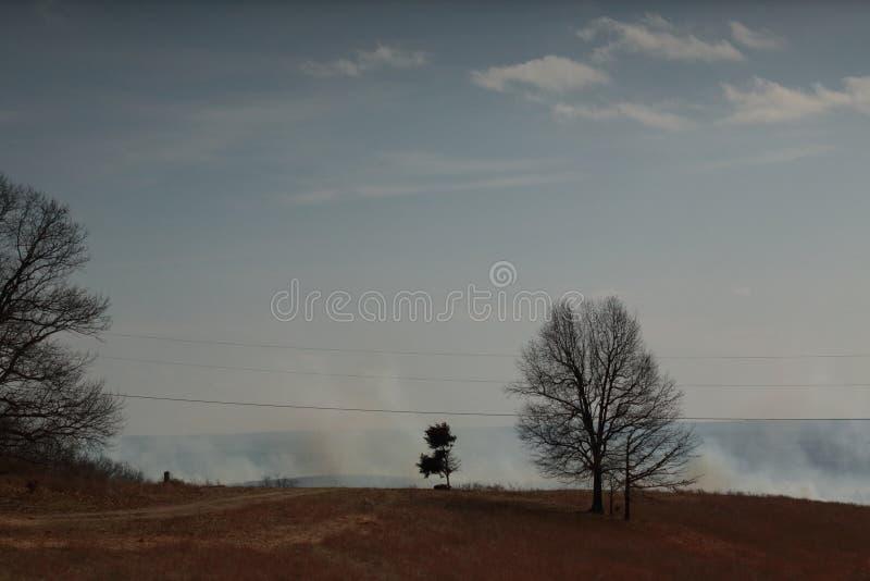 Incendio forestal en el condado de Taney, Missouri fotos de archivo libres de regalías
