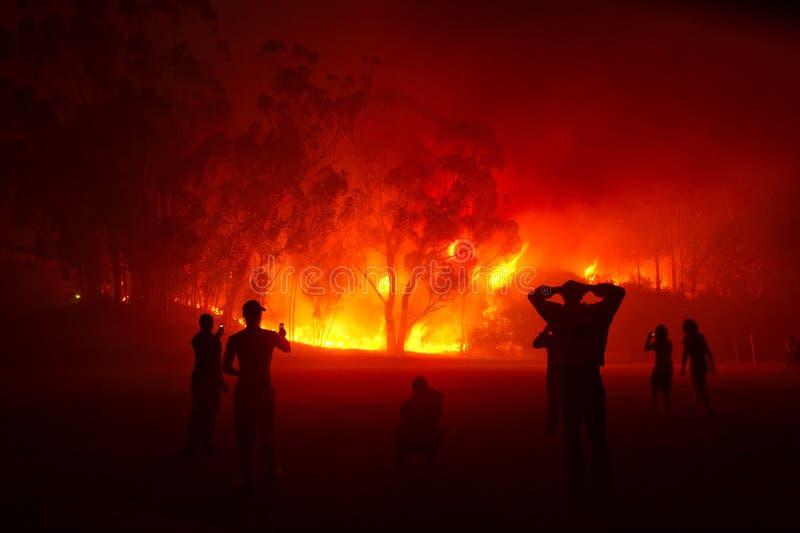 Incendio forestale di sorveglianza della gente nella notte fotografia stock libera da diritti