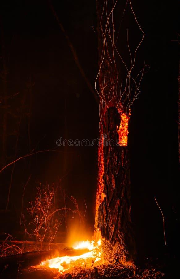 Incendio violento vulcanico fotografia stock libera da diritti