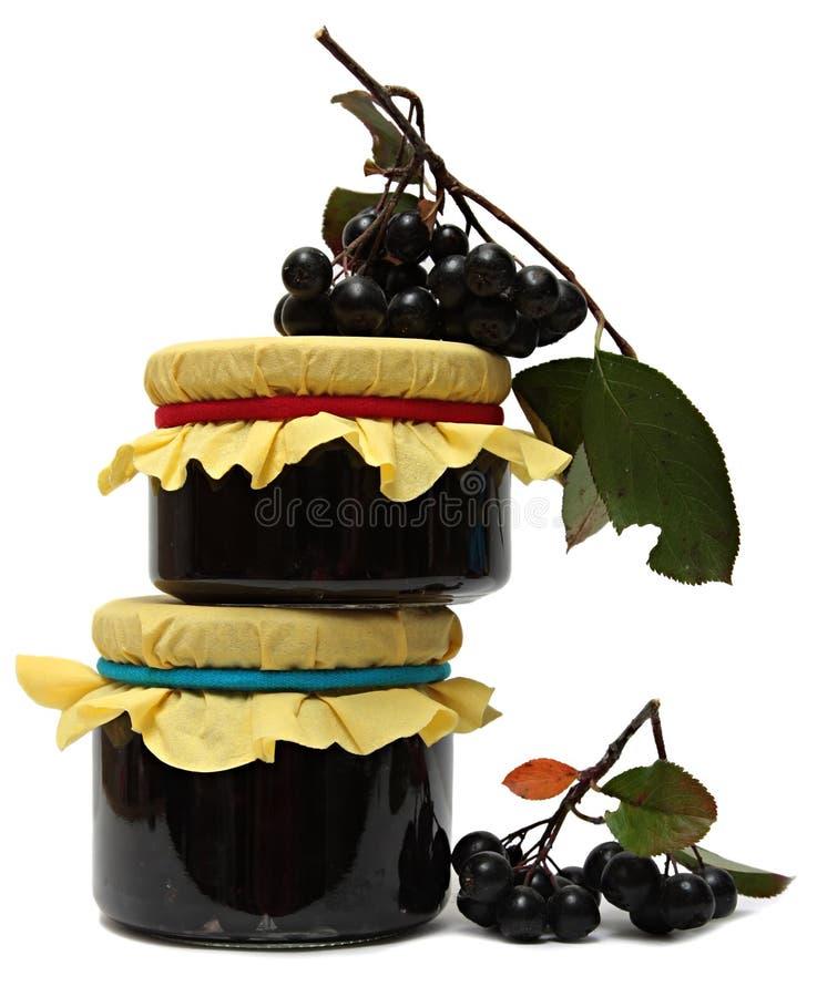Inceppi dal chokeberry e dalle bacche fresche isolati sopra fotografia stock