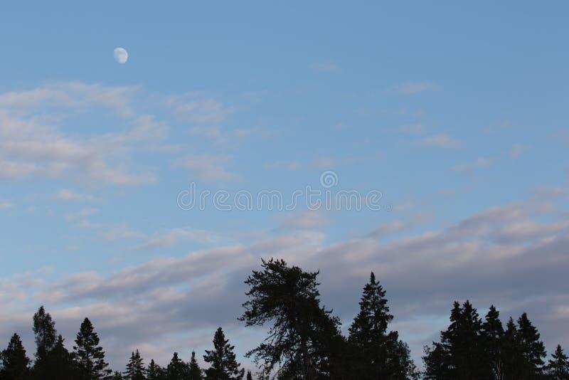 Inceratura della fase Gibbous della luna nella sera mentre il Sun è ancora fuori immagini stock