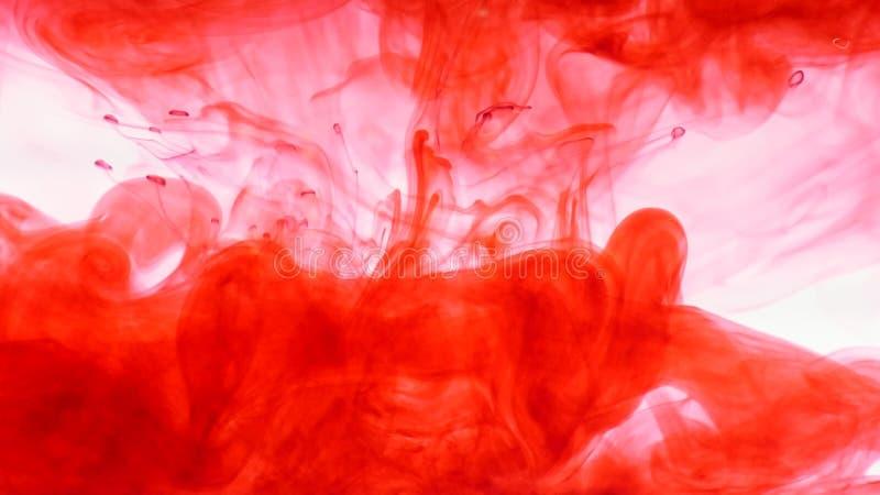 Inchiostro rosso in acqua Estratto fotografia stock