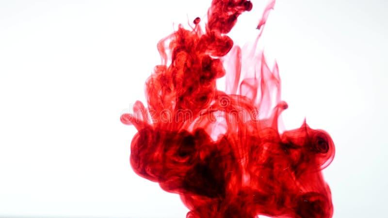 Inchiostro rosso in acqua Estratto fotografie stock libere da diritti