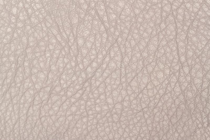 Incinérez le rose, plan rapproché de fond de texture de cuir de couleur de noisette image stock