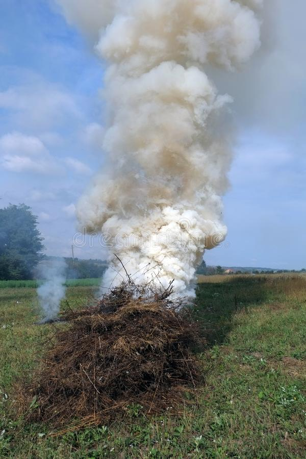 Incineración de la hierba seca imágenes de archivo libres de regalías