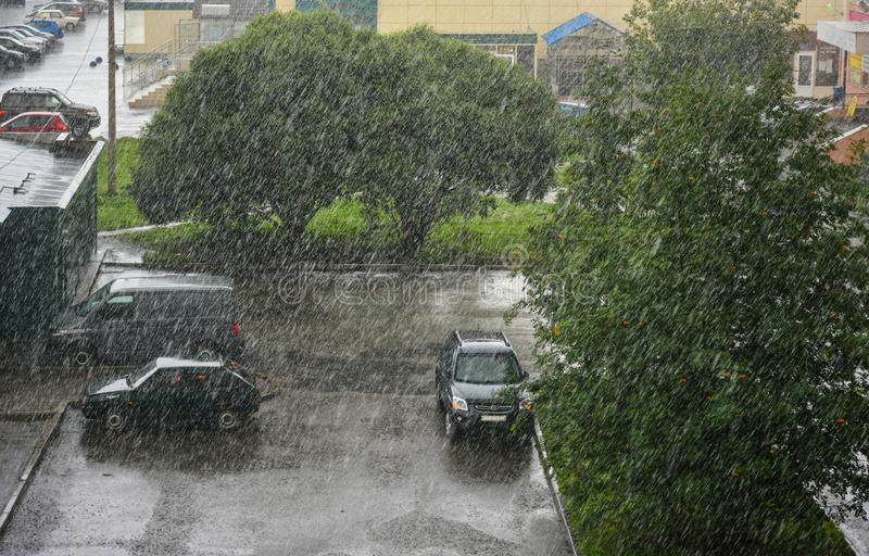 Inclement weather in the city in summer. Pouring rain in the city royalty free stock photography