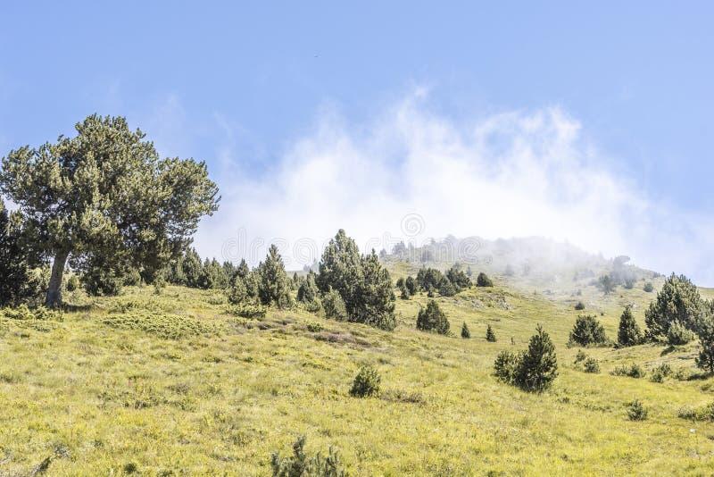 Inclinação de montanha com nuvens Pyrenees Andorra imagens de stock royalty free