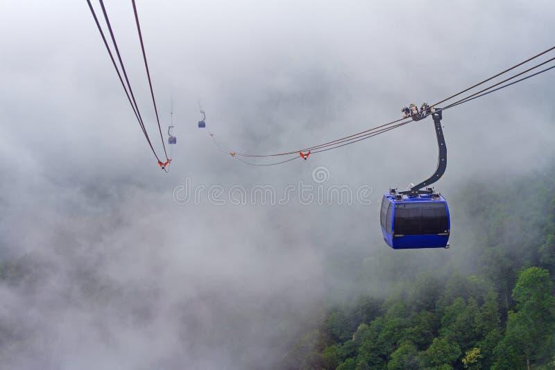 Inclinação de montanha florestado na baixa nuvem de encontro com as coníferas sempre-verdes encobertas na névoa e em um elevador  imagens de stock royalty free
