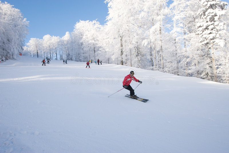 Inclinação do esqui fotografia de stock royalty free