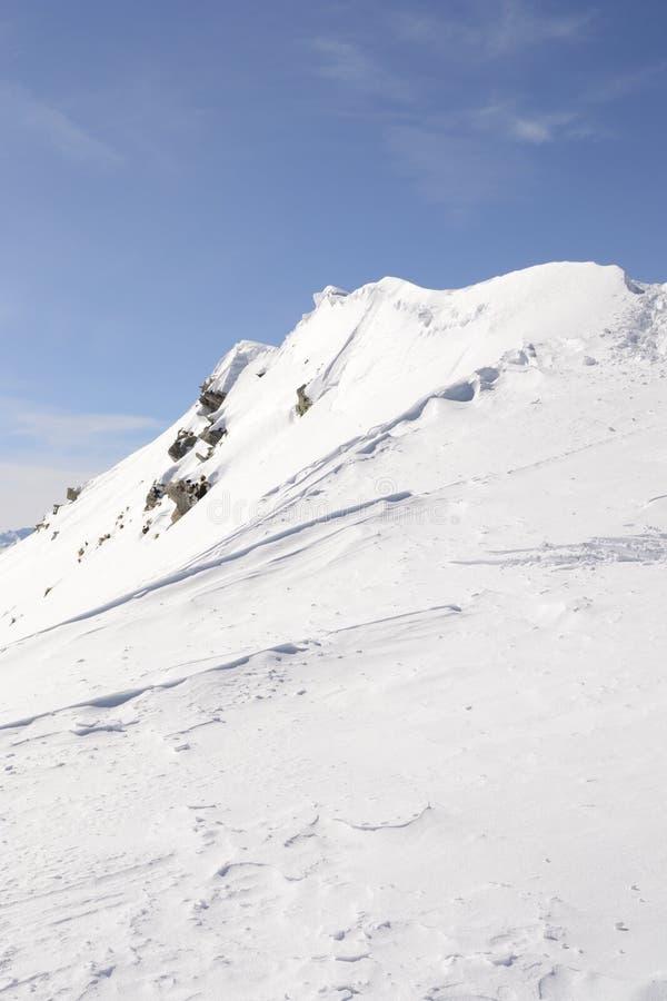 Cornice da neve no cume imagem de stock royalty free