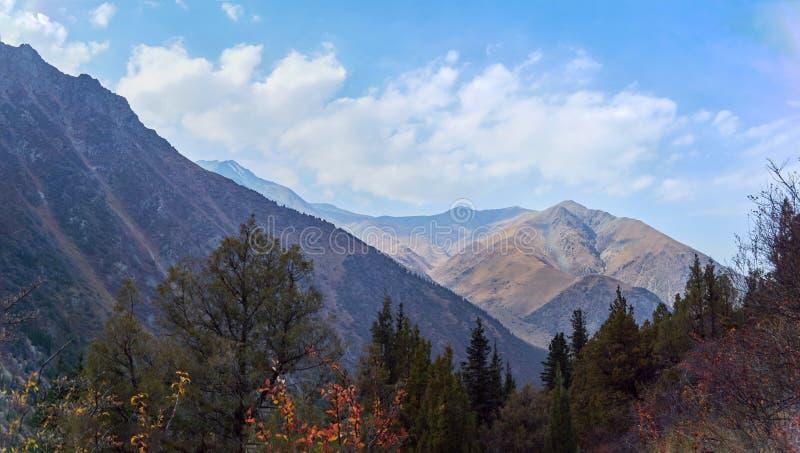 Inclinações de montanha ensolarados fotos de stock