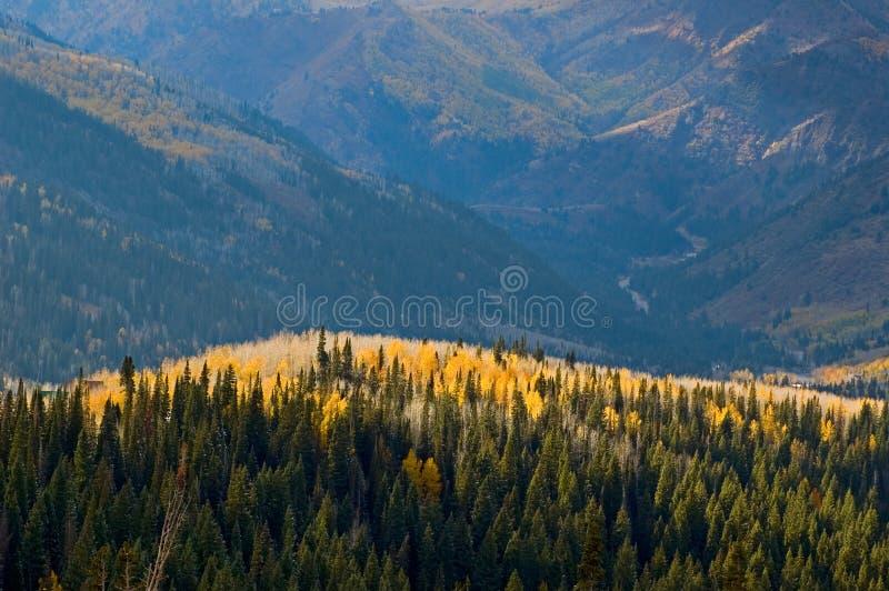 Inclinações de montanha na queda fotografia de stock royalty free