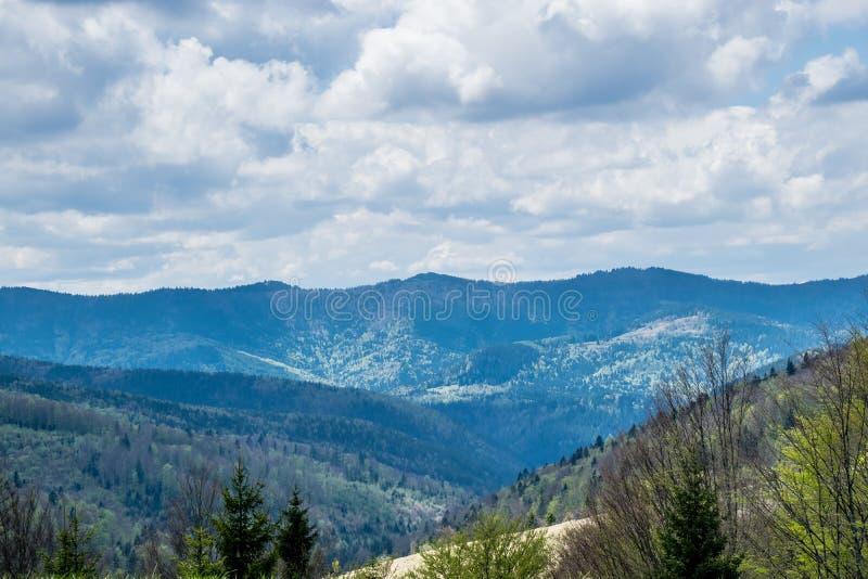 Inclinações de montanhas Carpathian foto de stock
