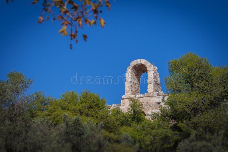 Incline o efeito do deslocamento das árvores na base da acrópole de Atenas imagem de stock royalty free