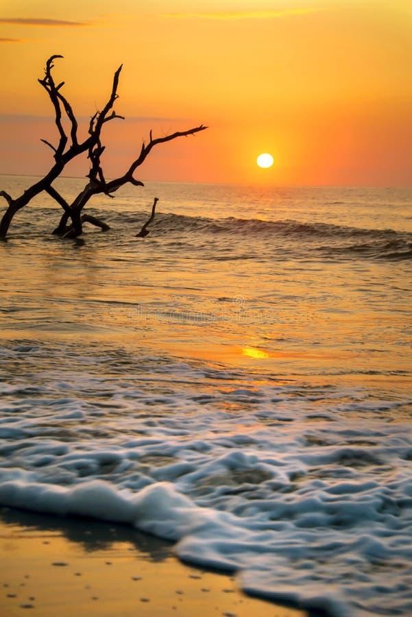 Incoming Tide. The incoming tide at Botany Bay Beach on Edisto Island, South Carolina royalty free stock photography