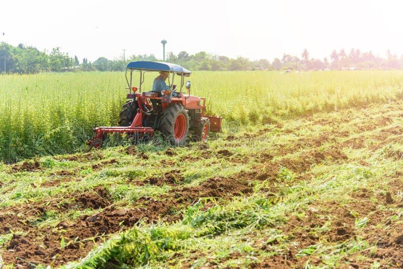 Incorporation de tracteur l'engrais vert photo stock