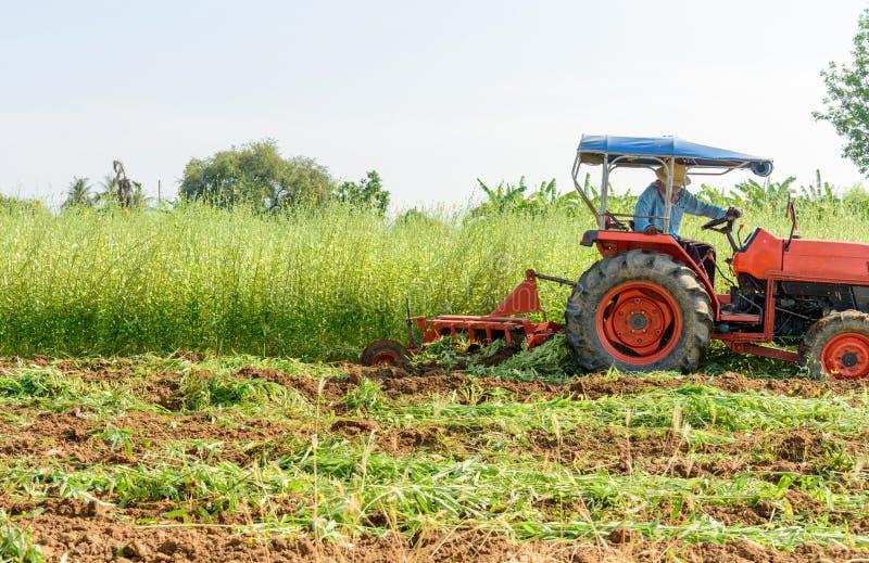 Incorporation l'engrais vert image libre de droits