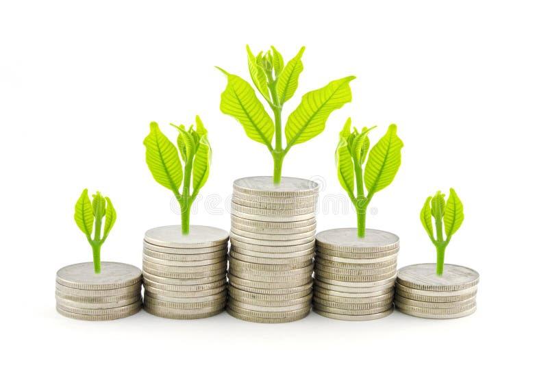 Increase your savings royalty free stock photo