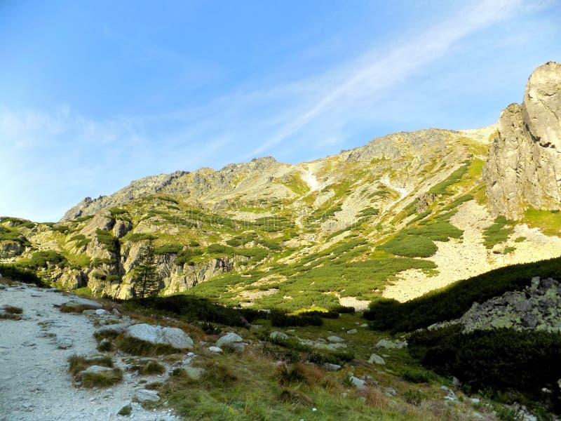 Incredibile vista di splendide montagne rocciose e paesaggi verdi in Slovacchia fotografia stock