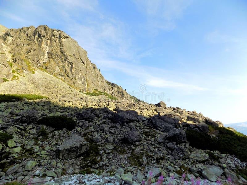 Incredibile vista di splendide montagne rocciose e paesaggi verdi in Slovacchia immagini stock libere da diritti
